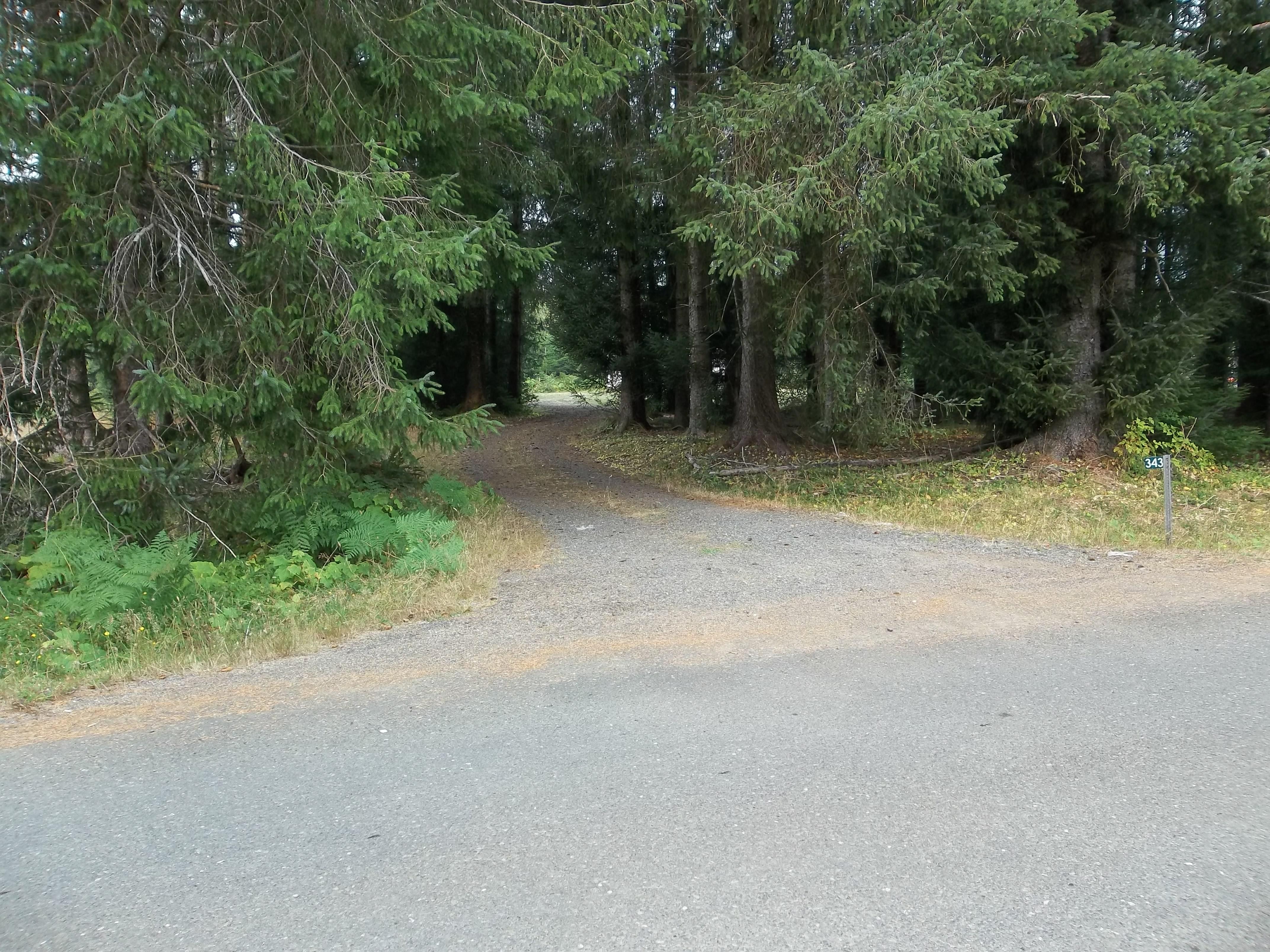 343 Elk Valley Rd.